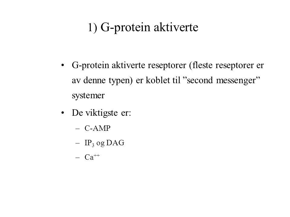 """1) G-protein aktiverte G-protein aktiverte reseptorer (fleste reseptorer er av denne typen) er koblet til """"second messenger"""" systemer De viktigste er:"""