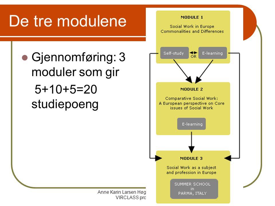 Anne Karin Larsen Høgskolen i Bergen VIRCLASS prosjektet De tre modulene Gjennomføring: 3 moduler som gir 5+10+5=20 studiepoeng