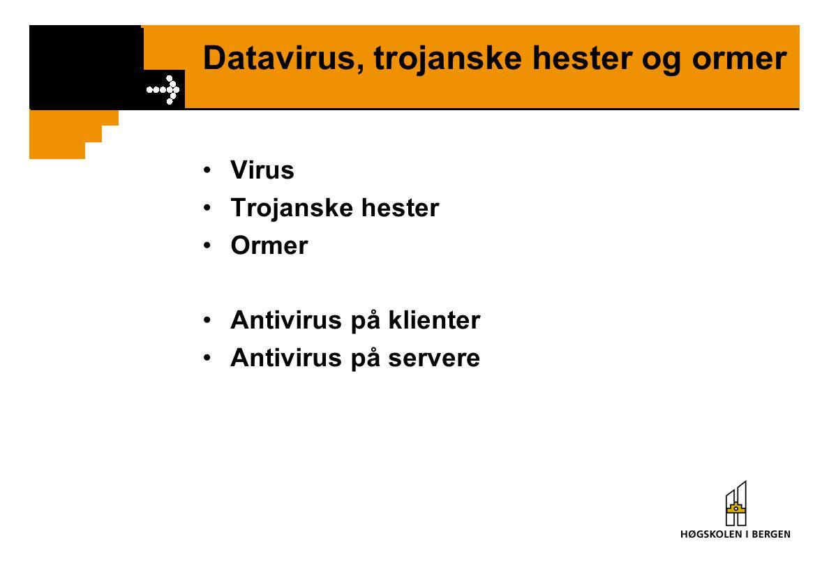 Datavirus, trojanske hester og ormer Virus Trojanske hester Ormer Antivirus på klienter Antivirus på servere