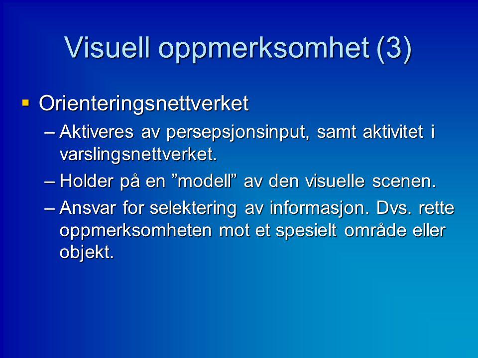 """Visuell oppmerksomhet (3)  Orienteringsnettverket –Aktiveres av persepsjonsinput, samt aktivitet i varslingsnettverket. –Holder på en """"modell"""" av den"""