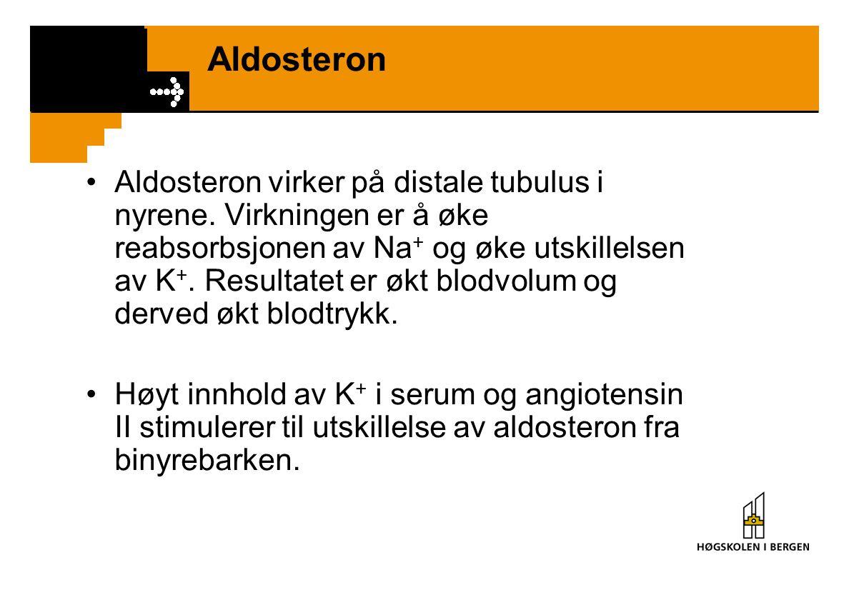Aldosteron Aldosteron virker på distale tubulus i nyrene. Virkningen er å øke reabsorbsjonen av Na + og øke utskillelsen av K +. Resultatet er økt blo