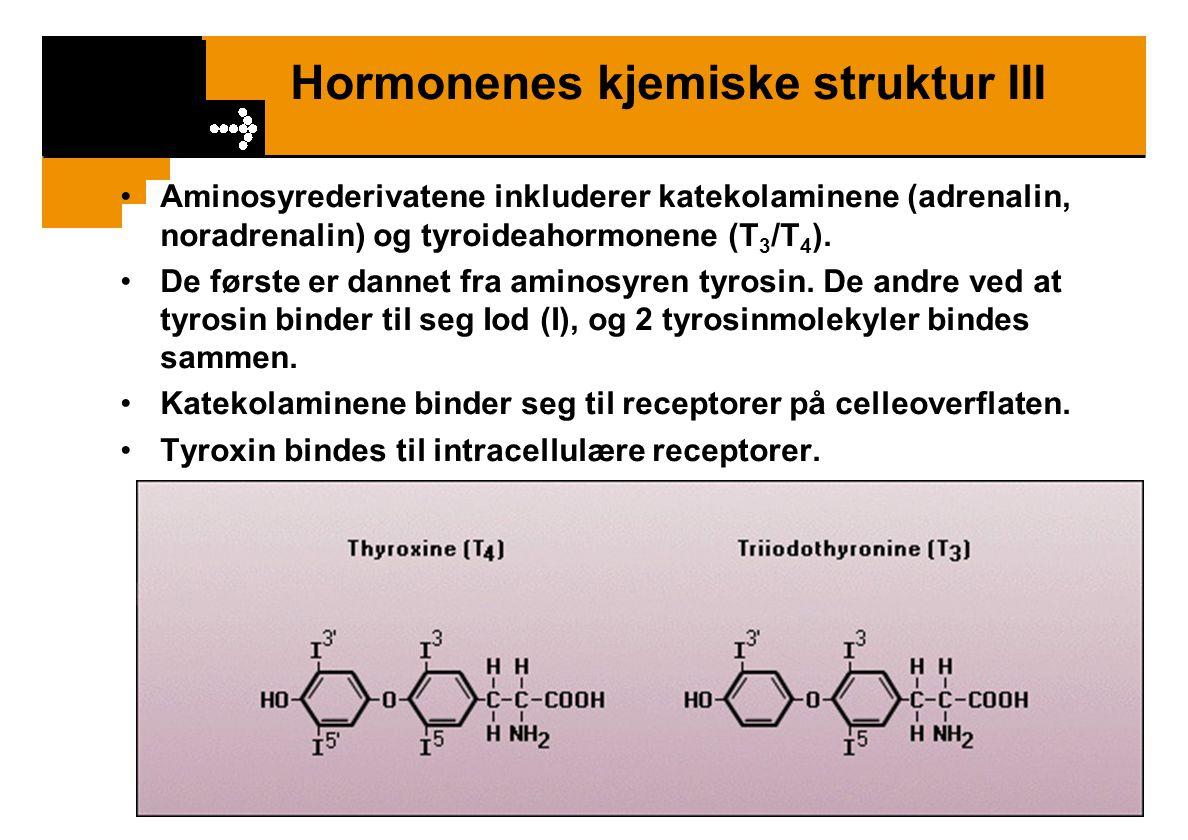 Hormonenes kjemiske struktur III Aminosyrederivatene inkluderer katekolaminene (adrenalin, noradrenalin) og tyroideahormonene (T 3 /T 4 ). De første e