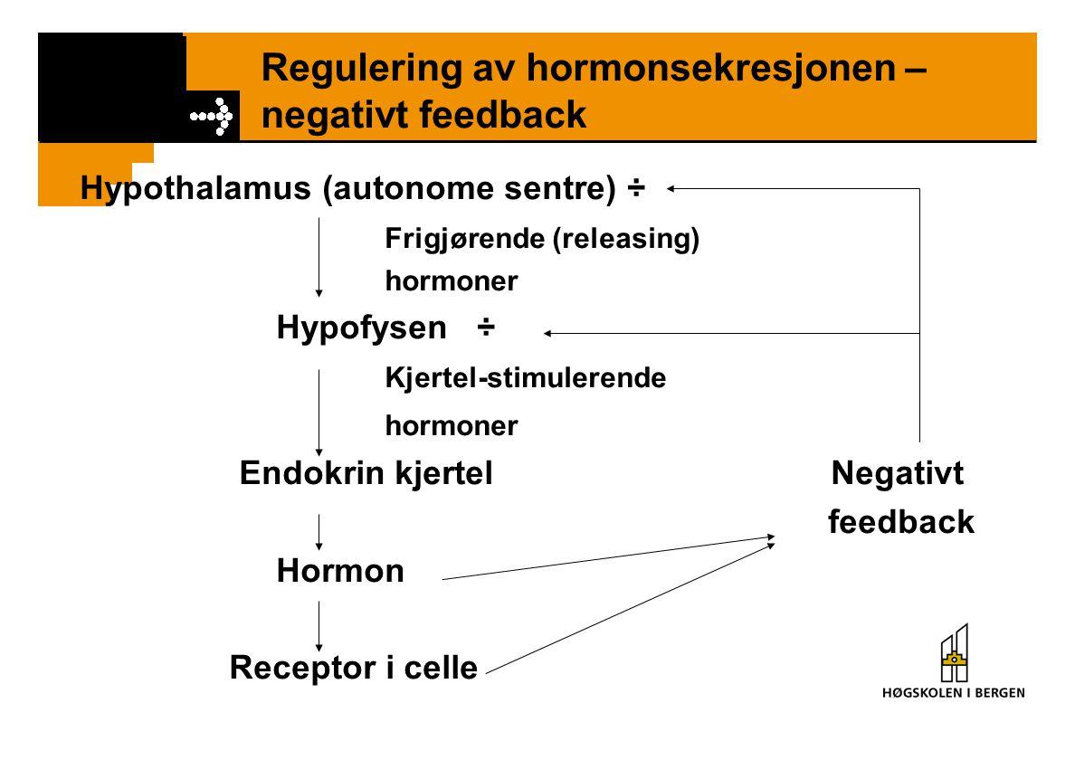 Regulering av hormonsekresjonen – negativt feedback Hypothalamus (autonome sentre) ÷ Frigjørende (releasing) hormoner Hypofysen ÷ Kjertel-stimulerende