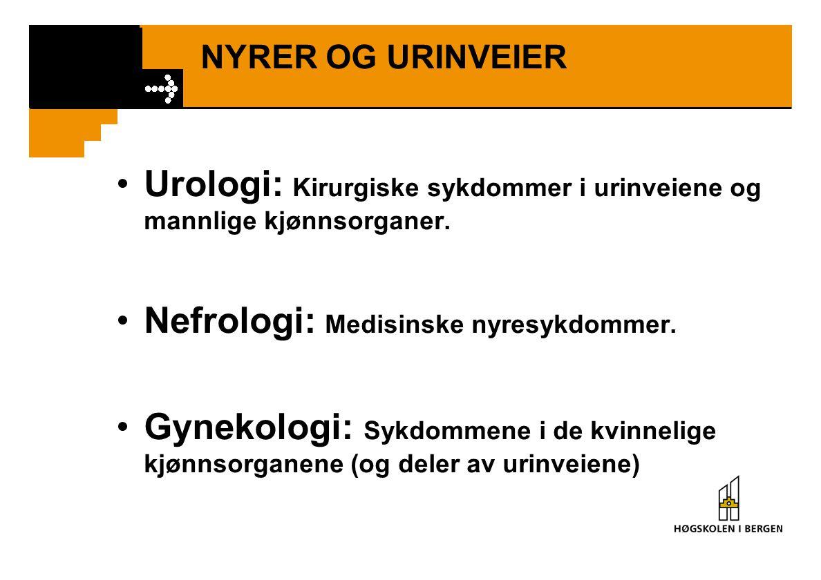 NYRER OG URINVEIER Urologi: Kirurgiske sykdommer i urinveiene og mannlige kjønnsorganer. Nefrologi: Medisinske nyresykdommer. Gynekologi: Sykdommene i