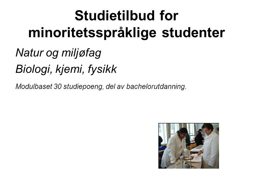 HiB: Studietilbud for minoritetsspråklige studenter Flerkulturell pedagogikk, (2004-2005) Pedagogikk 2 (2005-2006).