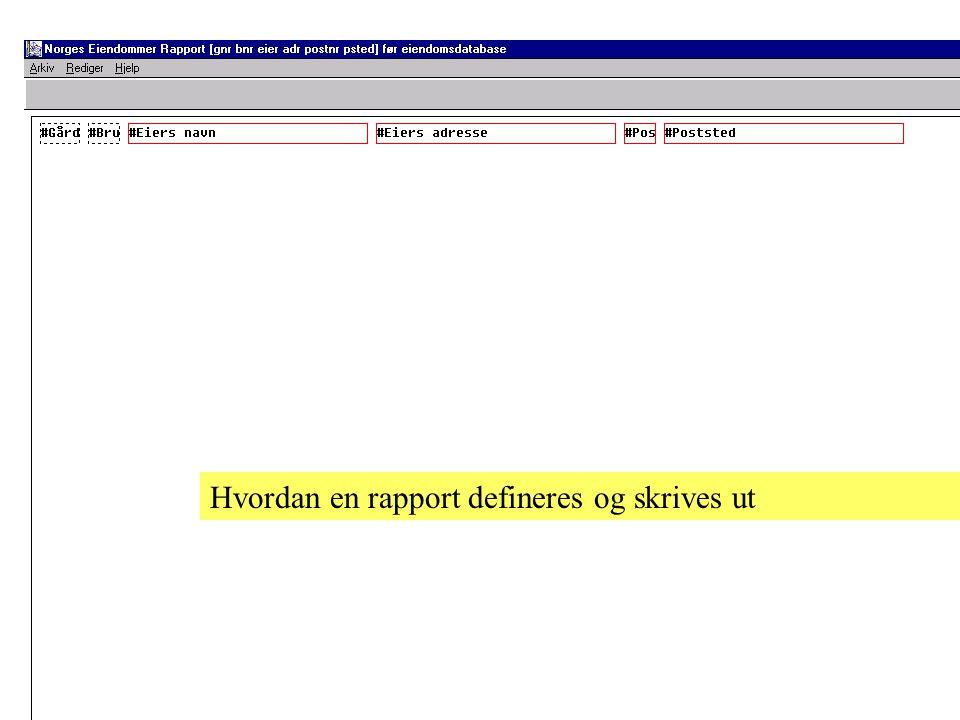 Hvordan en rapport defineres og skrives ut