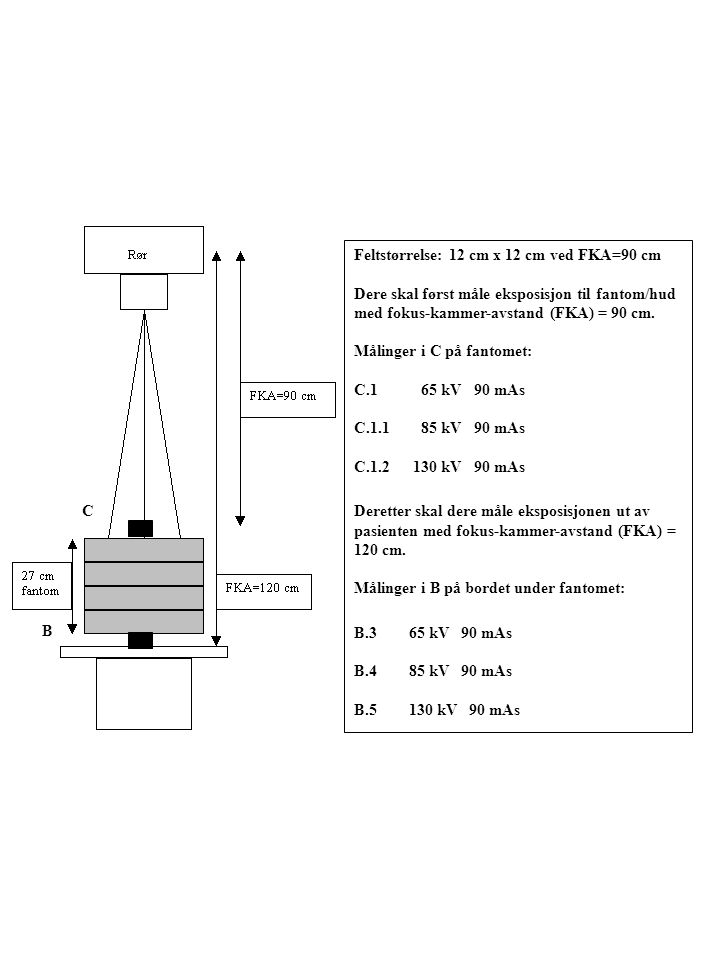 Feltstørrelse: 12 cm x 12 cm ved FKA=90 cm Dere skal først måle eksposisjon til fantom/hud med fokus-kammer-avstand (FKA) = 90 cm. Målinger i C på fan