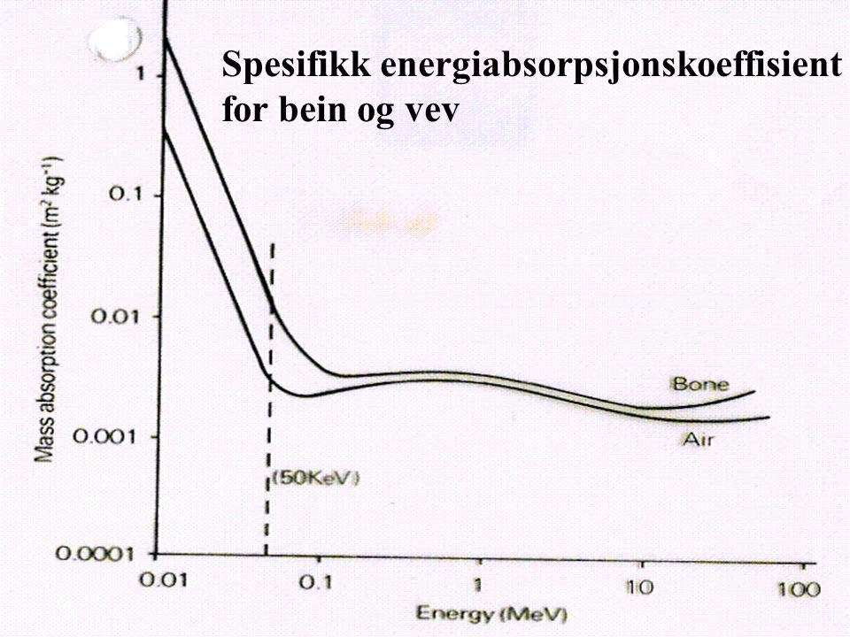 Spesifikk energiabsorpsjonskoeffisient for bein og vev