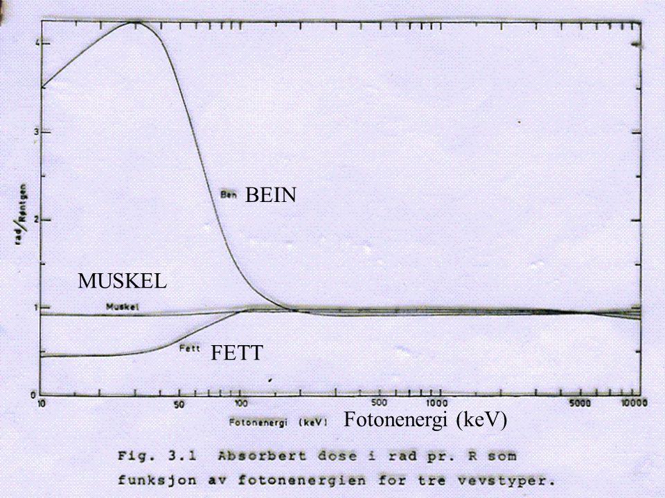 BEIN FETT MUSKEL Fotonenergi (keV)