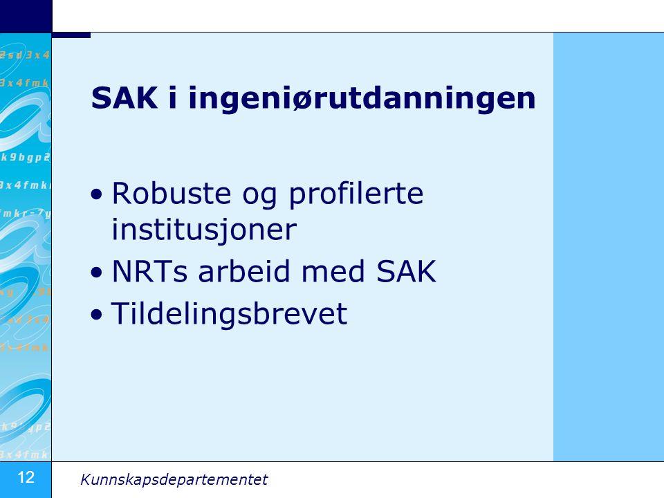 12 Kunnskapsdepartementet SAK i ingeniørutdanningen Robuste og profilerte institusjoner NRTs arbeid med SAK Tildelingsbrevet