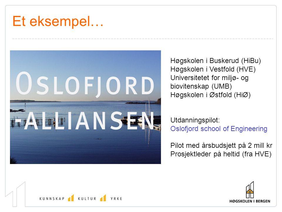 Høgskolen i Buskerud (HiBu) Høgskolen i Vestfold (HVE) Universitetet for miljø- og biovitenskap (UMB) Høgskolen i Østfold (HiØ) Utdanningspilot: Oslof