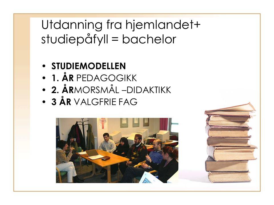 Utdanning fra hjemlandet+ studiepåfyll = bachelor STUDIEMODELLEN 1.