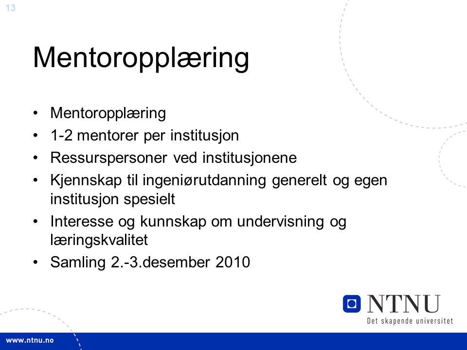13 Mentoropplæring 1-2 mentorer per institusjon Ressurspersoner ved institusjonene Kjennskap til ingeniørutdanning generelt og egen institusjon spesie