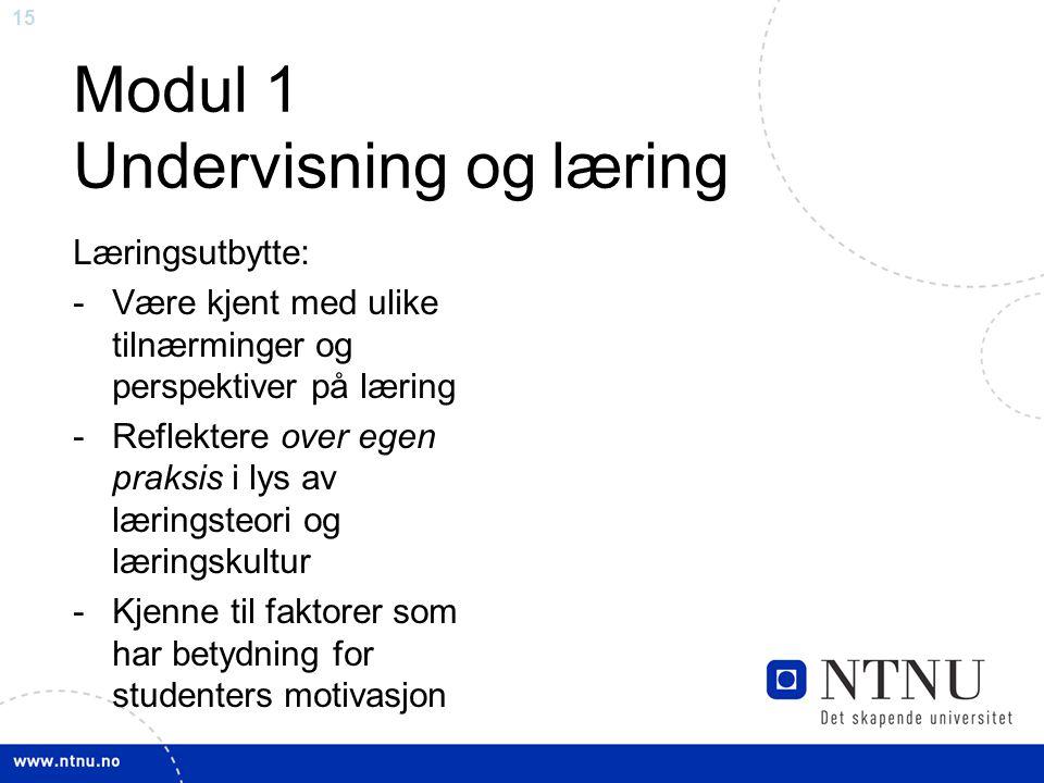 15 Modul 1 Undervisning og læring Læringsutbytte: -Være kjent med ulike tilnærminger og perspektiver på læring -Reflektere over egen praksis i lys av