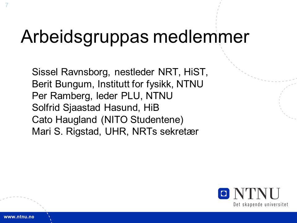 7 Arbeidsgruppas medlemmer Sissel Ravnsborg, nestleder NRT, HiST, Berit Bungum, Institutt for fysikk, NTNU Per Ramberg, leder PLU, NTNU Solfrid Sjaast