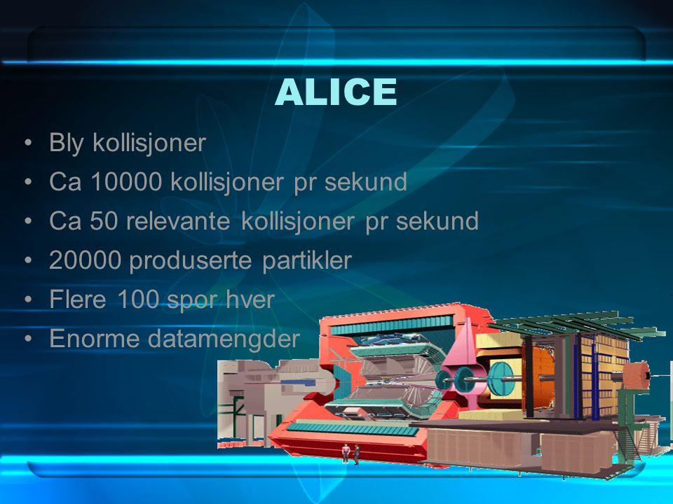 ALICE Bly kollisjoner Ca 10000 kollisjoner pr sekund Ca 50 relevante kollisjoner pr sekund 20000 produserte partikler Flere 100 spor hver Enorme datam