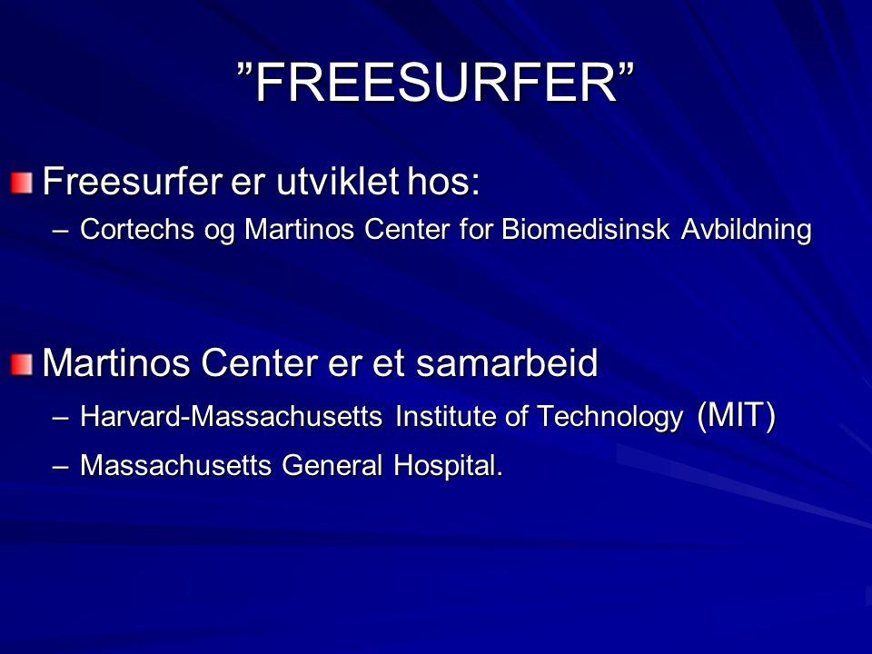 Hva gjør FreeSurfer: Vevsgjenkjenning og morfometri basert på MRI Freesurfer er det mest avanserte av slike verktøy