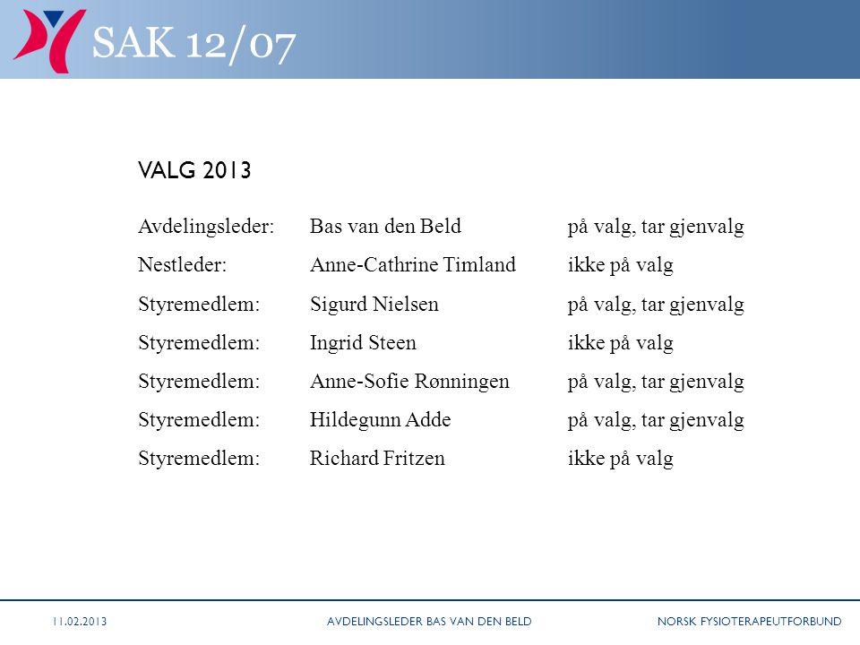 NORSK FYSIOTERAPEUTFORBUND SAK 11/08 VALG 2013 Avdelingsleder: Bas van den Beldpå valg, tar gjenvalg Nestleder:Anne-Cathrine Timlandikke på valg Styre