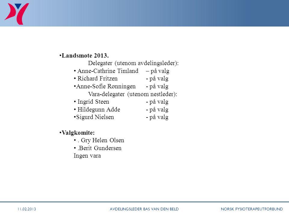 NORSK FYSIOTERAPEUTFORBUND (sak 11/08 fortsetter) Landsmøte 2013. Delegater (utenom avdelingsleder): Anne-Cathrine Timland – på valg Richard Fritzen-