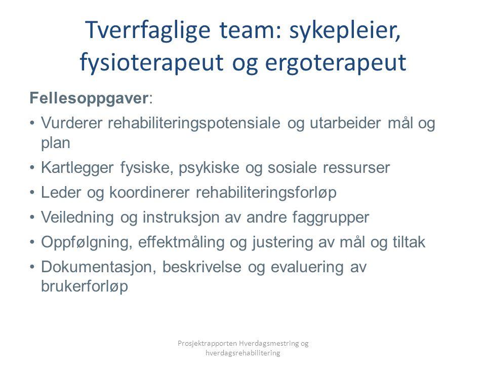 Tverrfaglige team: sykepleier, fysioterapeut og ergoterapeut Fellesoppgaver: Vurderer rehabiliteringspotensiale og utarbeider mål og plan Kartlegger f