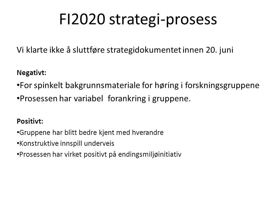 FI2020 strategi-prosess Vi klarte ikke å sluttføre strategidokumentet innen 20.