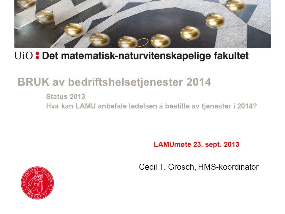 BRUK av bedriftshelsetjenester 2014 Status 2013 Hva kan LAMU anbefale ledelsen å bestille av tjenester i 2014.
