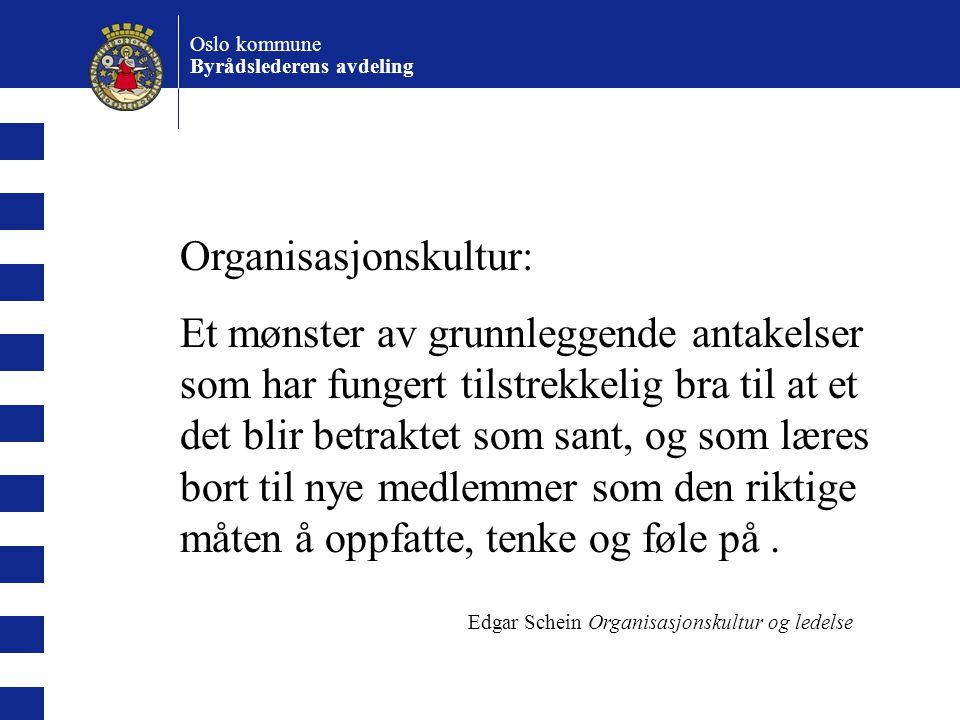 Oslo kommune Byrådslederens avdeling Organisasjonskultur påvirker beslutningsadferd bidrar til å bestemme hvilken informasjon som er viktig, og hva som kan utelukkes bestemmer hva som er passende adferd