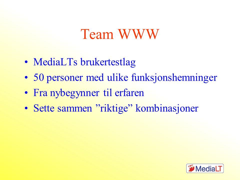Team WWW MediaLTs brukertestlag 50 personer med ulike funksjonshemninger Fra nybegynner til erfaren Sette sammen riktige kombinasjoner