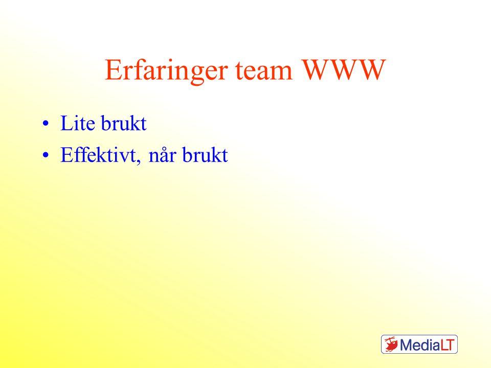 Erfaringer team WWW Lite brukt Effektivt, når brukt
