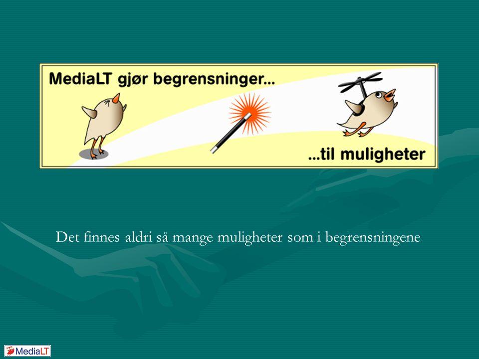 Utviklingsfirmaet MediaLT Tlf: 21 53 80 10 Epost: info@medialt.no Web: www.medialt.no Stemmestyrt interaksjon (stemint) Et forprosjekt støttet av Norges Forskningsråd/IT Funk
