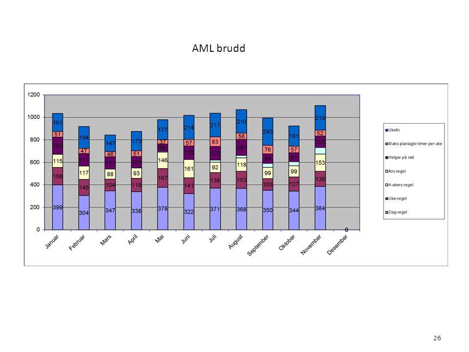 AML brudd 26 4. Bemanning