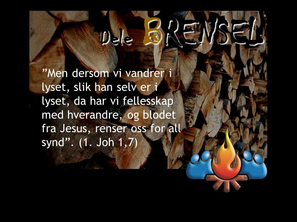 Dele BRENSEL Men dersom vi vandrer i lyset, slik han selv er i lyset, da har vi fellesskap med hverandre, og blodet fra Jesus, renser oss for all synd .
