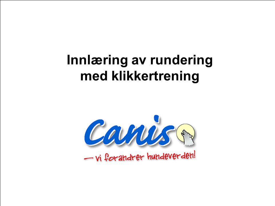 Copyright Canis AS 2007 Innlæring av rundering med klikkertrening