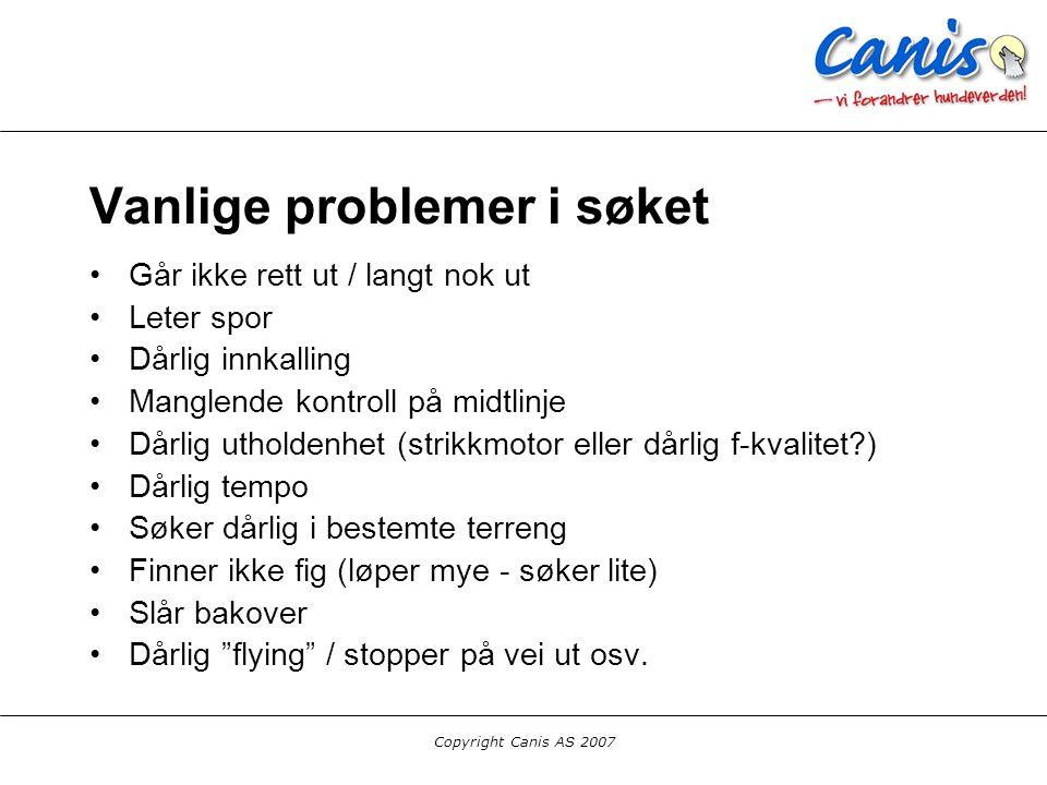 Copyright Canis AS 2007 Vanlige problemer i søket Går ikke rett ut / langt nok ut Leter spor Dårlig innkalling Manglende kontroll på midtlinje Dårlig