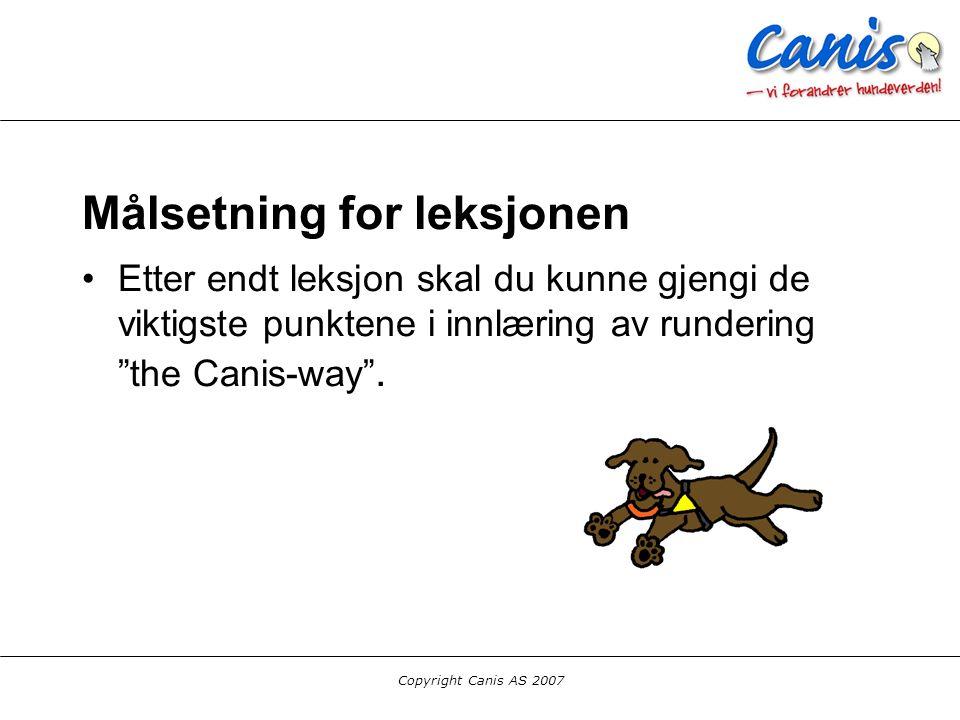 Copyright Canis AS 2007 Oppdeling av treningen Lek med figurant Lokalisering (overværstrening) Søk i system Melding (bringkobbel eller hals) Kontroll Alle deler bør trenes parallellt helt fra starten.