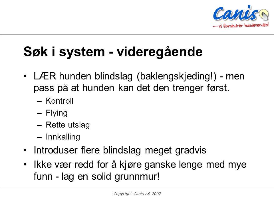 Copyright Canis AS 2007 Søk i system - videregående LÆR hunden blindslag (baklengskjeding!) - men pass på at hunden kan det den trenger først. –Kontro