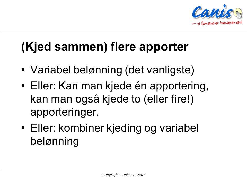 Copyright Canis AS 2007 (Kjed sammen) flere apporter Variabel belønning (det vanligste) Eller: Kan man kjede én apportering, kan man også kjede to (el