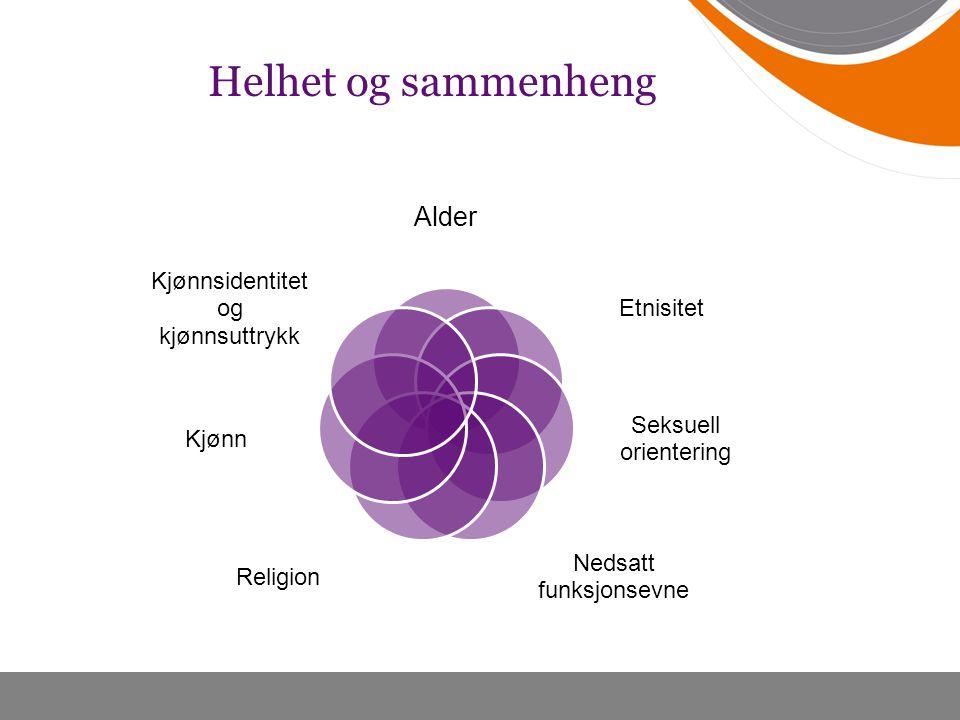 Helhet og sammenheng Alder Etnisitet Seksuell orientering Nedsatt funksjonsevne Religion Kjønn Kjønnsidentitet og kjønnsuttrykk