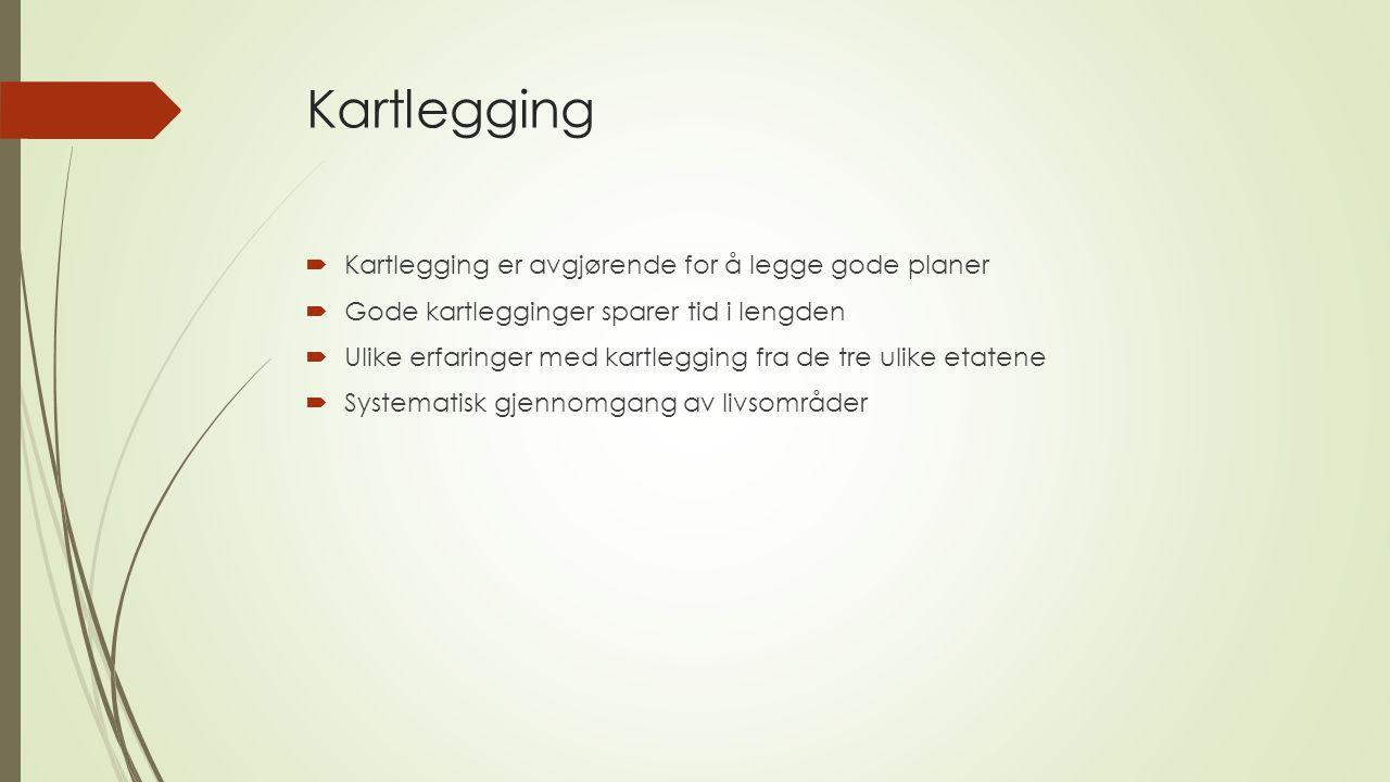 Kartlegging  Kartlegging er avgjørende for å legge gode planer  Gode kartlegginger sparer tid i lengden  Ulike erfaringer med kartlegging fra de tre ulike etatene  Systematisk gjennomgang av livsområder