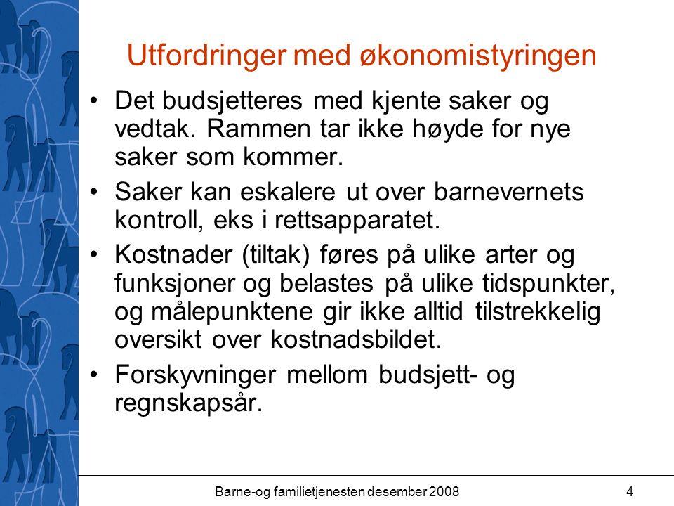Barne-og familietjenesten desember 20084 Utfordringer med økonomistyringen Det budsjetteres med kjente saker og vedtak.