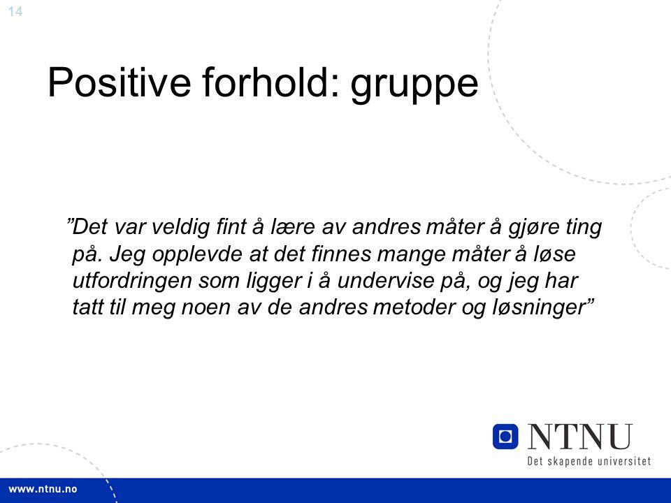 """14 Positive forhold: gruppe """"Det var veldig fint å lære av andres måter å gjøre ting på. Jeg opplevde at det finnes mange måter å løse utfordringen so"""