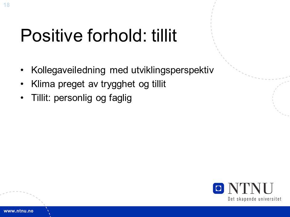 18 Positive forhold: tillit Kollegaveiledning med utviklingsperspektiv Klima preget av trygghet og tillit Tillit: personlig og faglig