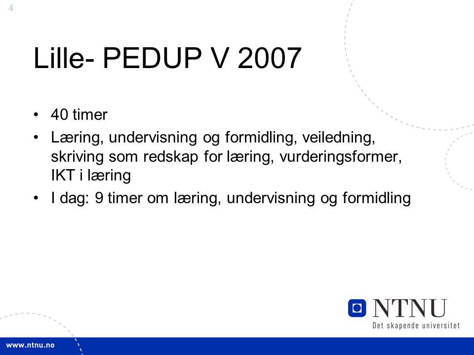 4 Lille- PEDUP V 2007 40 timer Læring, undervisning og formidling, veiledning, skriving som redskap for læring, vurderingsformer, IKT i læring I dag:
