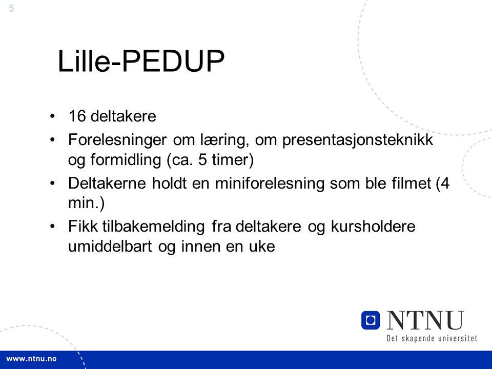 5 Lille-PEDUP 16 deltakere Forelesninger om læring, om presentasjonsteknikk og formidling (ca. 5 timer) Deltakerne holdt en miniforelesning som ble fi