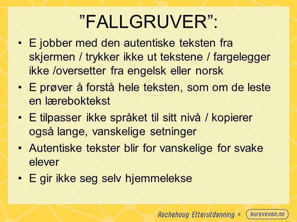 """""""FALLGRUVER"""": E jobber med den autentiske teksten fra skjermen / trykker ikke ut tekstene / fargelegger ikke /oversetter fra engelsk eller norsk E prø"""