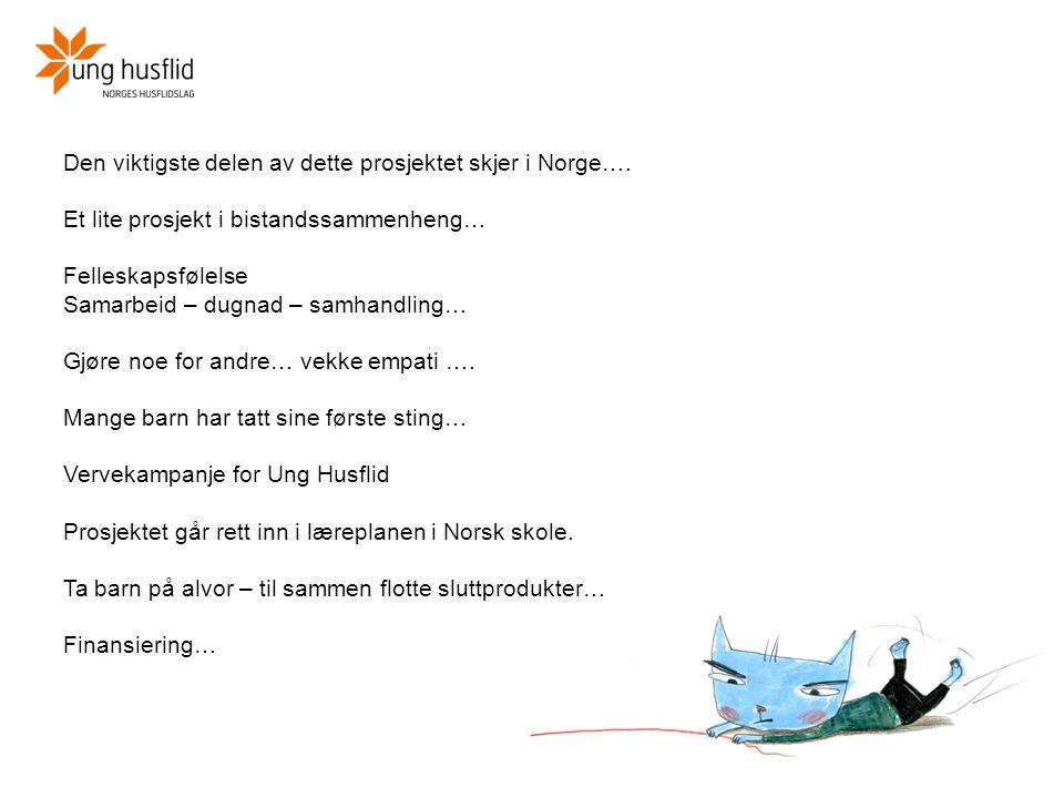 Den viktigste delen av dette prosjektet skjer i Norge…. Et lite prosjekt i bistandssammenheng… Felleskapsfølelse Samarbeid – dugnad – samhandling… Gjø