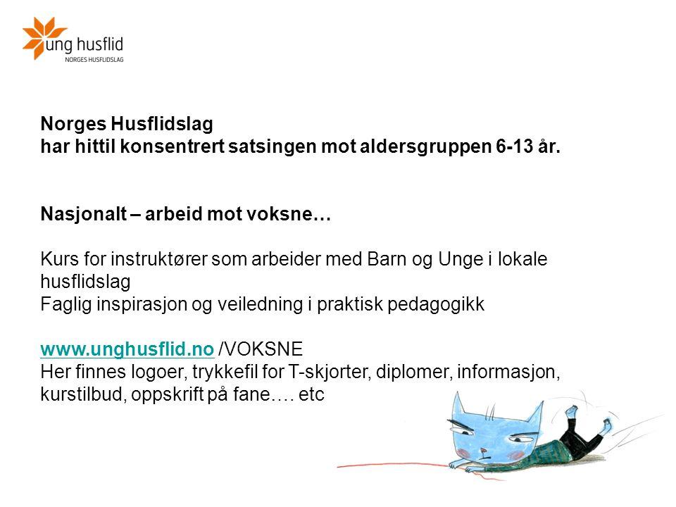 Norges Husflidslag har hittil konsentrert satsingen mot aldersgruppen 6-13 år. Nasjonalt – arbeid mot voksne… Kurs for instruktører som arbeider med B