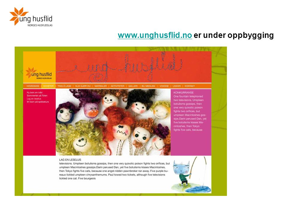 www.unghusflid.no er under oppbygging