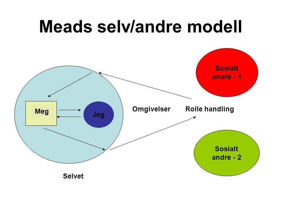 Meads selv/andre modell Jeg Meg Sosialt andre - 1 Sosialt andre - 2 Selvet Rolle handlingOmgivelser