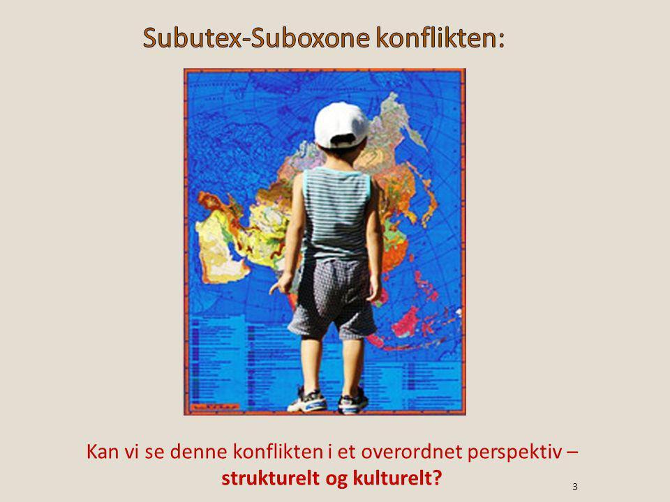 Kan vi se denne konflikten i et overordnet perspektiv – strukturelt og kulturelt? 3